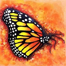 Butterflie  by Samra Art