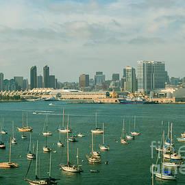 San Diego Marina by Rima Biswas