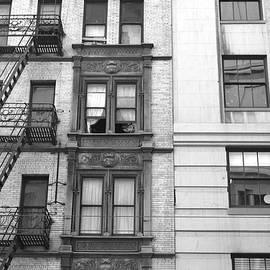 Matt Harang - San Francisco Building Fire Escape - Black and White