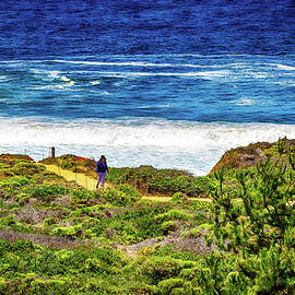 Joseph Hollingsworth - San Luis Obispo Beach