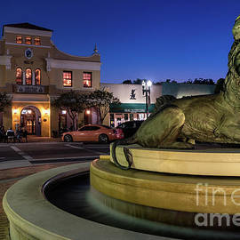 Dawna Moore Photography - San Marco Lion Fountain at Blue Hour, Jacksonville, Florida