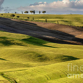 San Quirico D Orcia by Lumiere De Liesse Ltd Images of Robert L Lease