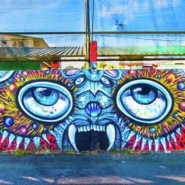 San Ramon Two Eyed Graffiti Wall Art by Norma Brandsberg