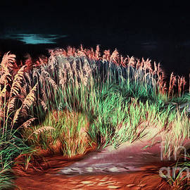 Sand Dunes at Night on the Outer Banks AP by Dan Carmichael