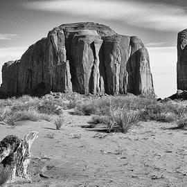 Sand Land ... by Judy Foote-Belleci