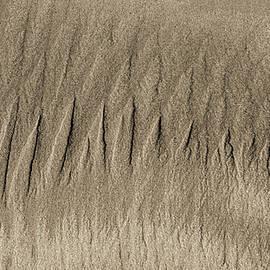 Steven Ralser - Sand Patterns on the Beach 3