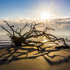 Sand Shadows by Debra and Dave Vanderlaan