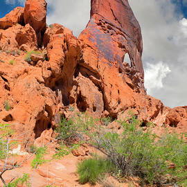 Sand Stone Monolith Valley Of Fire by Frank Wilson