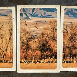 Priscilla Burgers - Sandhill Cranes Triptych