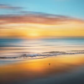 Debra and Dave Vanderlaan - Sandpiper Sunrise Dreamscape