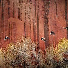 R christopher Vest - Sandstone Wall At Capitol Reef