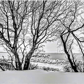 Sandy Hook covered in snow by Geraldine Scull