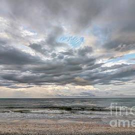 Sanibel Island Seashells by Jeff Breiman