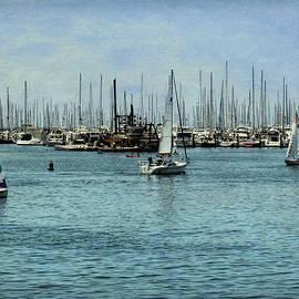 Santa Barbara Harbor 2 by Judy Vincent