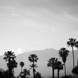 Santa Barbara I Bw by David Gordon