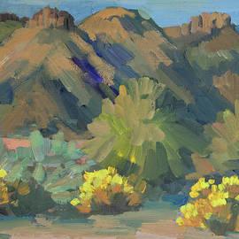 Santa Rosa mountains and Brittle Bush - Diane McClary
