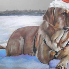 Santa's Fuzzy Elf by Barbara Keith