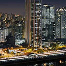 Carlos Alkmin - Sao Paulo iconic skyline - cable-stayed bridge