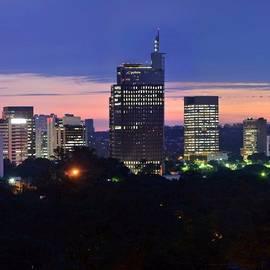 Sao Paulo Skyline At Dusk - Pinheiros /