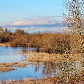 Lorraine Baum - Sauvie Island Duck Pond
