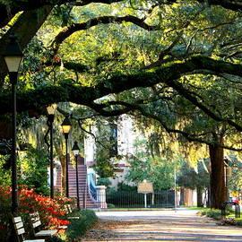 Savannah Park Sidewalk by Carol Groenen