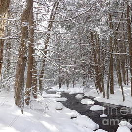 Saw Mill River after a March Snowfall by Maili Page