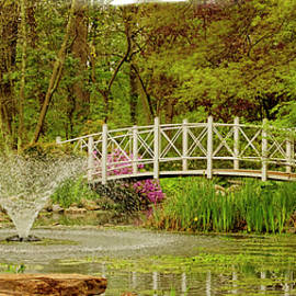 Sayen Gardens bridge in spring Hamilton New Jersey by Geraldine Scull