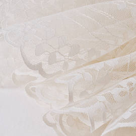 Scalloped Lace  by Sandra Foster