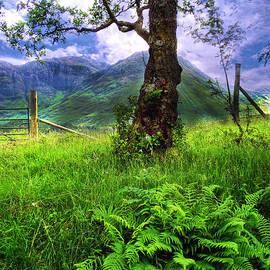 Countryside at Glencoe by Judi Bagwell