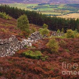 Scenic Beauty From Scotland by Courtney Dagan For Poet's Eye