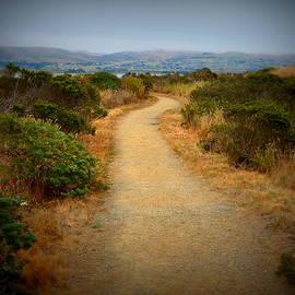 Carla Parris - Scenic Path on Bodega Head