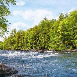 Schroon River Adirondack Wilderness by Christina Rollo