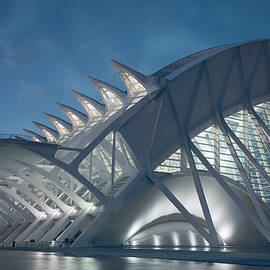 Joan Carroll - Museum Architecture Valencia Spain