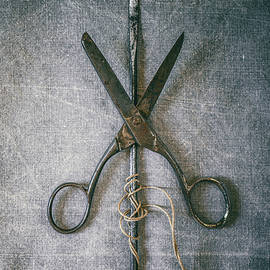Carlos Caetano - Scissors and Needle