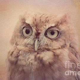 Chris Scroggins - Screech Owl 4
