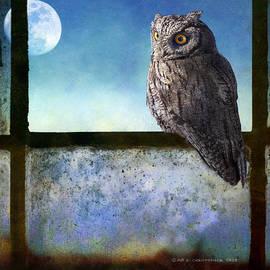 Screech Owl In Barn Window by R christopher Vest