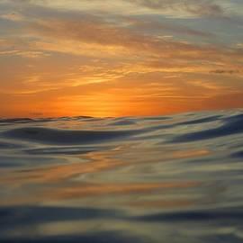 Jennifer Ansier - Scuba sunset