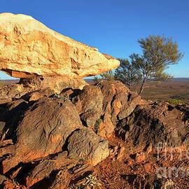 Bill Robinson - Sculpture Park Broken Hill