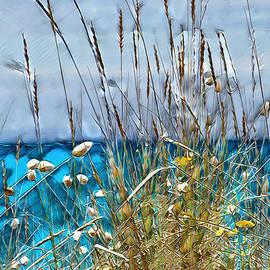 Pennie McCracken - Sea Grass