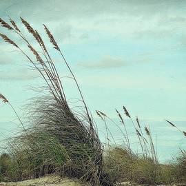 Sea Oats In The Breeze