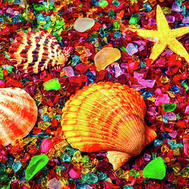 Sea Shells On Sea Glass - Garry Gay