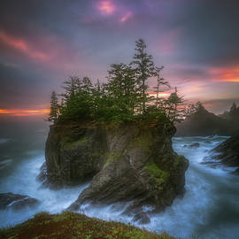 Sea Stack With Trees Of Oregon Coast by William Freebilly photography