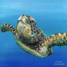 Adam Johnson - Sea Turtle 3 of 3