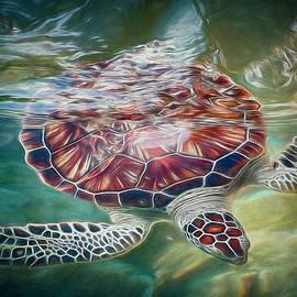 Teresa Wilson - Sea Turtle Dive