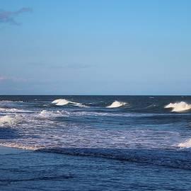 Cynthia Guinn - Sea Waves