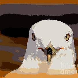 Seagull Abstract by Ed Weidman