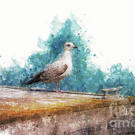 Mary Machare - Seagull on the Pier