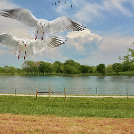 Ericamaxine Price - Seagulls By the Lake - Painting