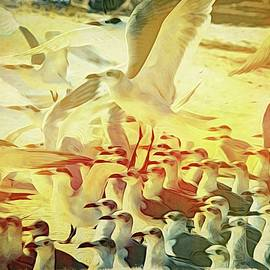 Seagulls Everywhere by Alice Gipson