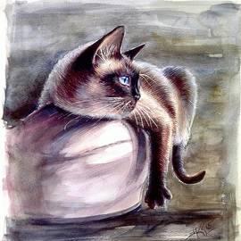 Siamese cat 2 by Katerina Kovatcheva